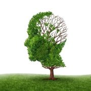 Migraines and brain function